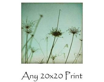 Any Print As A 20x20