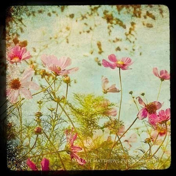 Meadow of Flowers Photography, boho baby nursery print, summer country chic, vintage home decor photo, colorful, bright wall art - 8x8
