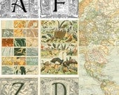 Download Images Antique French Dictionary Illustrations Alphabets Maps Create your own Collage Sheets