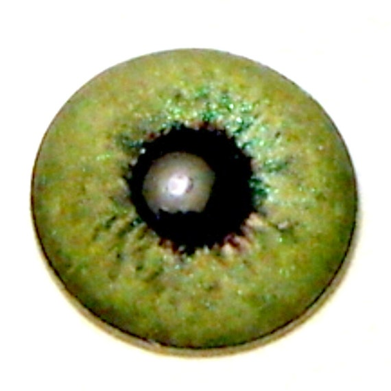 Doll Irises 11.5 mm semi-metallic color Sage