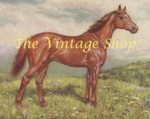 Thoroughbred Man of War Horse Print of 1920s Ed Miner Painting