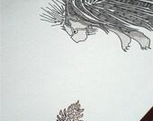 Porcu-pine-cone