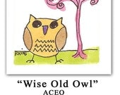 """ACEO Original Watercolor """"Wise Old Owl"""" by Penny King"""