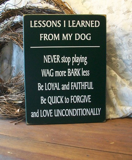 lessons i learned from my dog wood sign dog lover saying
