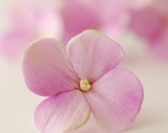 Made to Order - Lilac Purple Hydrangea Hair Flowers Set of 6