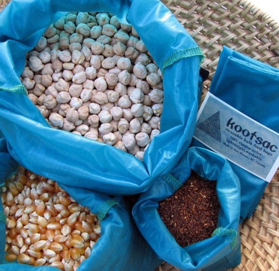 Reusable bulk food bags, reusable produce bags, bulk bins, ripstop nylon bag, travel food bags,set of three food pouches, turquoise