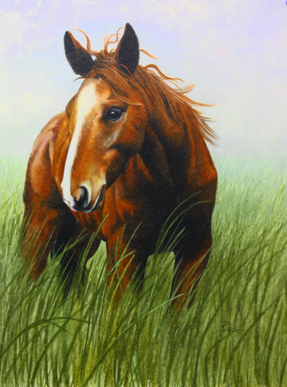 prismacolor art print of horse in the wind 8x10