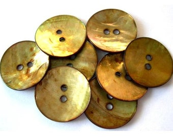 6 Buttons, shell, beautiful color, 23mm for button jewelry, sewing, crafts