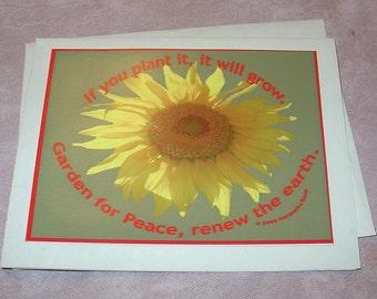 Card,Garden for Peace, sunflower notecard