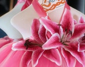 Tutu Dress for Girls in Pink Lily  Sized 5-6T  Perfect for Portraits