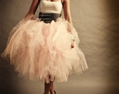 Shabby Chic Tulle Skirt A...