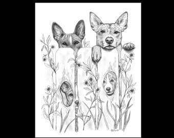 Basenji Tribe Dogs 11 X 14 Signed Giclee Fine Art Print