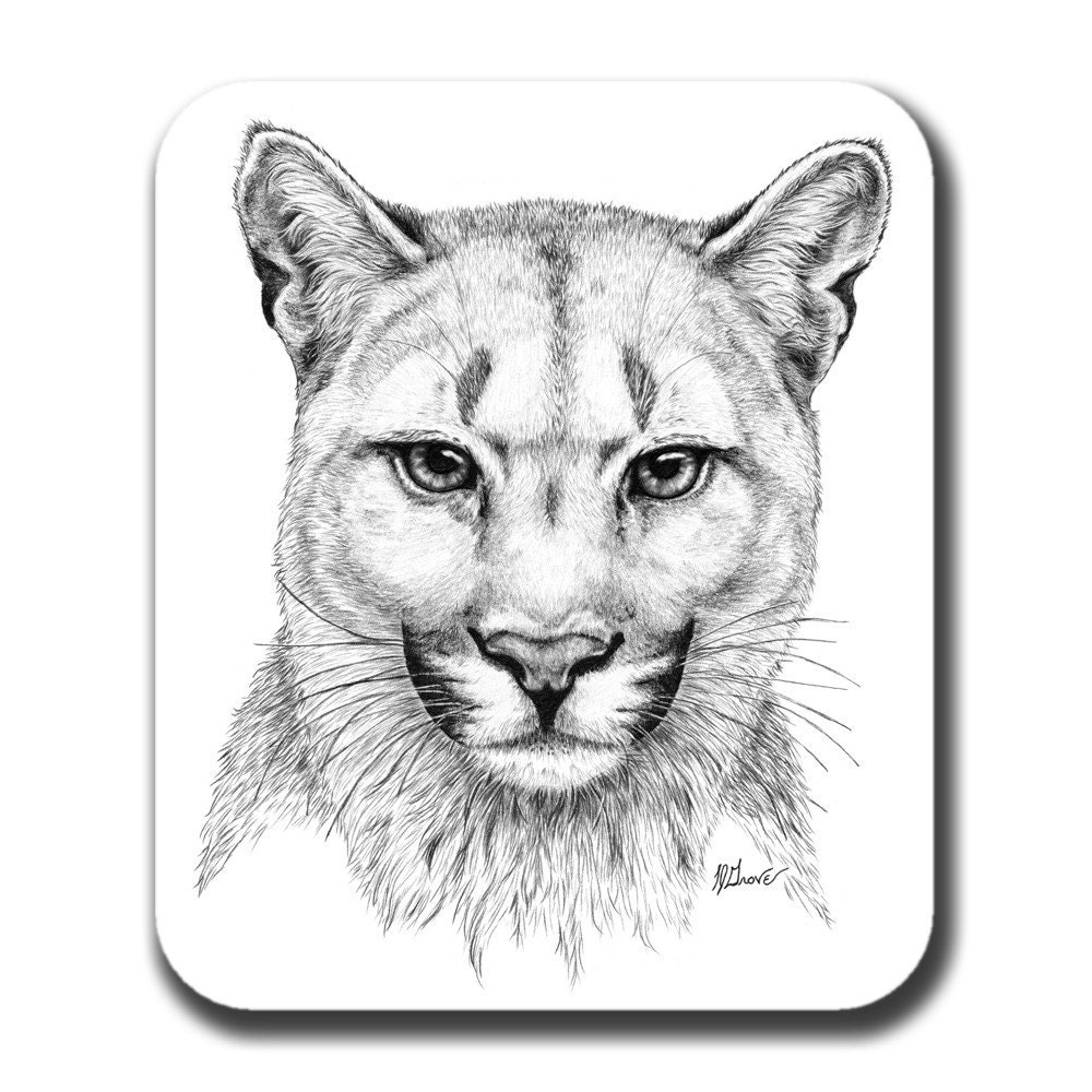Cougar Face Line Drawing : Cougar face cat art mouse pad by artbyljgrove on etsy