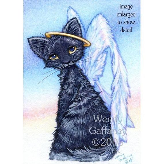 cat bath rap