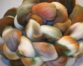 February in Michigan bfl wool roving\/top 4 1\/8 oz