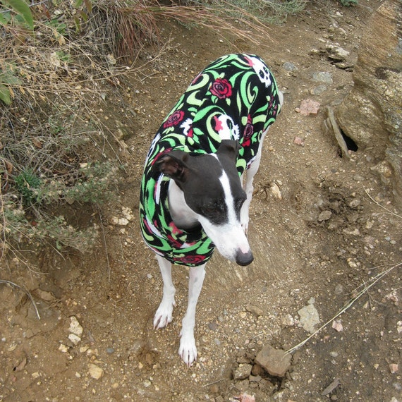 Italian Greyhound Dog Coat Sewing Pattern