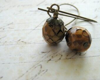 Acorn Earrings, Fall Earrings, Toasted Almond Acorn, Antiqued Brass Kidney Wire Earrings