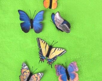 PDF  Butterfly Plant Poke, butterfly , flower