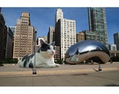 Lilly in Chicago Notecard Set