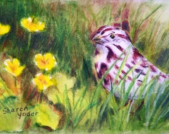 "ACEO Original - Watercolor Painting - 2 1/2"" x 3 1/2"" Size - Bird Painting - Sparrow - Wildlife Art - Artist Trading Cards - Buttercups"