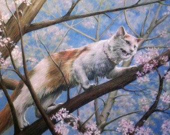 Cat Art - Limited Edition Print - Giclee Print - Cat in Tree - Spring Blossoms - Landscape - Wall Art - Print of Original Colored Pencil Art