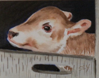 "Original ACEO - Watercolor Painting - Calf - Baby Cow - Farm Animals - Artist Trading Cards - Art Cards - 2 1/2"" x 3 1/2"" - Fine Art"