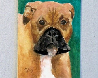 "Original ACEO Watercolor Painting - 2 1/2"" x 3 1/2"" - Animals -  Dog Painting -  Boxer - Artist Trading Cards - Art Cards - Fine Art - Pets"
