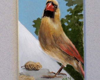 "Original ACEO Watercolor Painting - Birds - Female Cardinal - 2 1/2"" x 3 1/2"" - Artist Trading Cards - Art Cards - Wildlife  Art"
