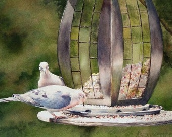 Limited Edition Print - Mourning Doves