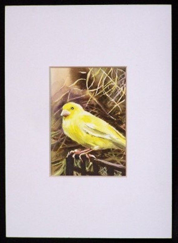 ACEO matte - White - 5 x 7 inches  or smaller