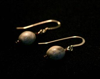 Howlite and Garnet Earrings
