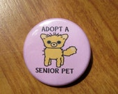 Adopt A Senior Pet - wear something cute and sensible