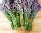 "Lavender print - french country - rustic farmhouse - garden wall art -  purple green wall art - 8x10 11x14  ""Lavender Bundles"""