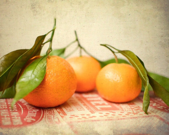 Still Life Fruit Photography - Orange wall art kitchen decor fresh fruit oranges food photo print green rustic vintage kitchen art 8x10