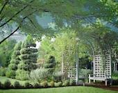 rose garden arbor trees green bushes spring green blue bench infrared art print 8x12 - This is the Garden