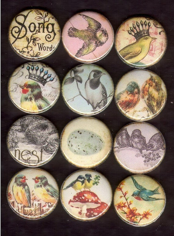 12 Shabby Chic Cottage Style Images Vintage Style Birds and Nesting flat back cabochon 1 inch buttons 25mm medallion