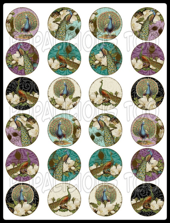Peacocks Stunning flat back buttons, pin back buttons or hollow set of 24 GORGEOUS