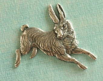 Silver Rabbit Finding 2307