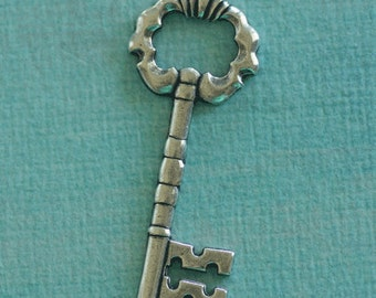 Silver Skeleton Key Finding 2649