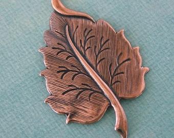 Copper Leaf Finding 807