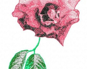 Fabulous  Machine Embroidery Design  by LetZRocK (2228)