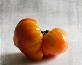 8x8 Tomato