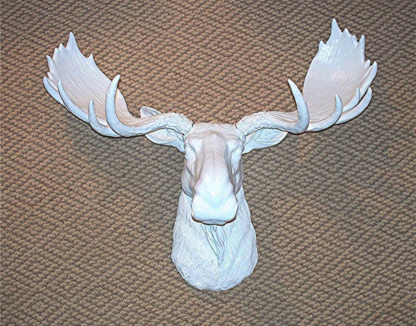 White moose faux taxidermyantlersmoose - Fake moose head mount ...