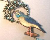 blue bird's dream