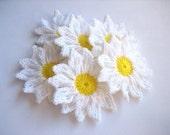 Daisy Flowers--Set of 6 (no1)