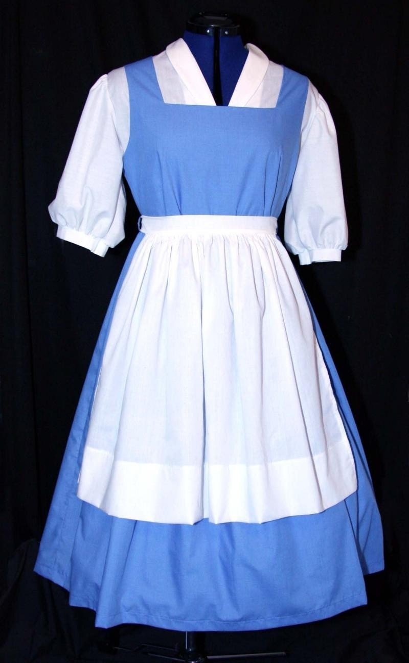 Adult Blue Belle Blue Provincial Costume Custom Sz By Mom2rtk