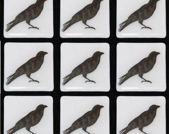 "Black Crow on White Glass Tiles 4""/Custom Tiles / Hand Painted Blackbird Silhouettes, Kitchen Tiles, Bathroom Tiles FREE Shipping to US"