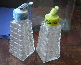 Glass Salt and Pepper Shakers - Florida
