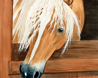 HAFLINGER horse art SO LOVELY in stall long mane
