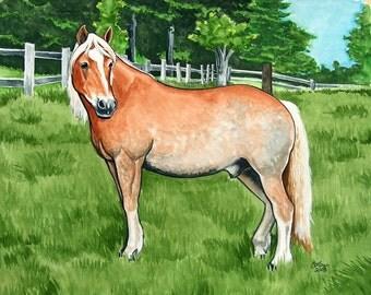 HAFLINGER art SO LOVELY Horse Art
